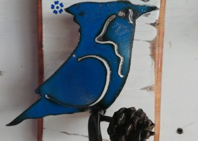 BlueJay Two